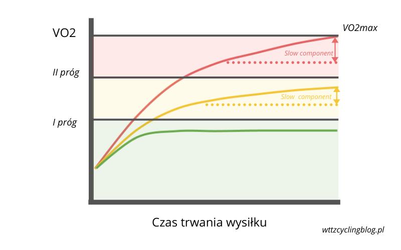 Zachowanie mleczanu i VO2 podczas wysiłku o różnej intensywności